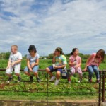 Kids N Company field trip to Noguez Farm