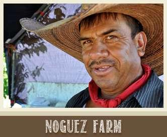 noguez farm